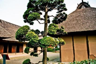 Japan 2001-Tokyo House-64
